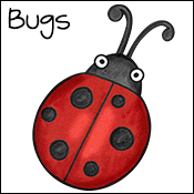 bugs & insect activities