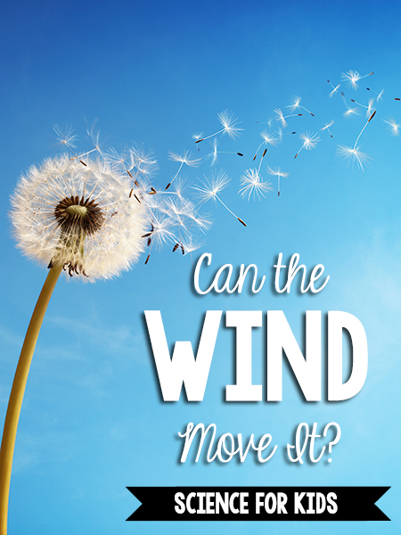 Can the Wind Move It?