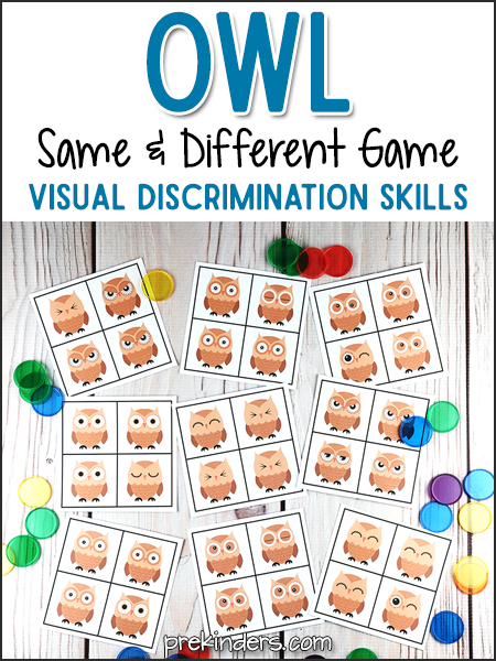 Owl Same and Different Game: Visual Discrimination Skills